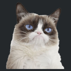 Grumpy Cat - Heavy Cotton ™ 100% Cotton T Shirt Design
